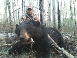 "Vinnie's first bear was okay but not what he was looking for. His second, this guy can just be called, ""Another Monster Bear"". Whow. All non baited ""spot and stalk"", hunts and always great hunts with large black bears. Congratulations on such a trophy. Another 400 pound plus black bear trophy. Each member of their group took home two bear as is nearly always the case on these spot and stalk hunts."